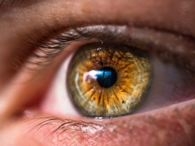 Avucue Oasys Lens Kullanıcılarının Yorumları